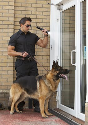 K-9 Services Deerfield Beach